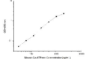 Image no. 2 for Calcium ATPase At 60A (CA-P60A) ELISA Kit (ABIN1113863)