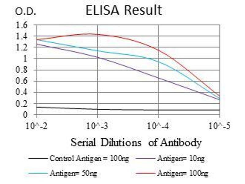 ELISA image for anti-RPS6KB1 antibody (Ribosomal Protein S6 Kinase, 70kDa, Polypeptide 1) (ABIN969565)