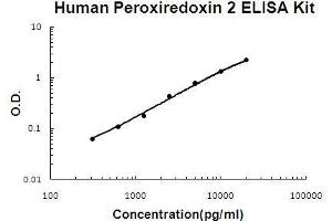 Image no. 1 for Peroxiredoxin 2 (PRDX2) ELISA Kit (ABIN5510694)