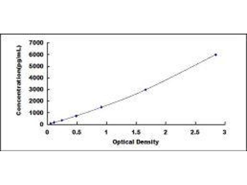 Mannan-Binding Lectin serine Peptidase 1 (C4/C2 Activating Component of Ra-Reactive Factor) (MASP1) ELISA Kit