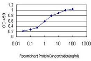 Image no. 2 for anti-S100 Calcium Binding Protein A6 (S100A6) (AA 18-90) antibody (ABIN562772)