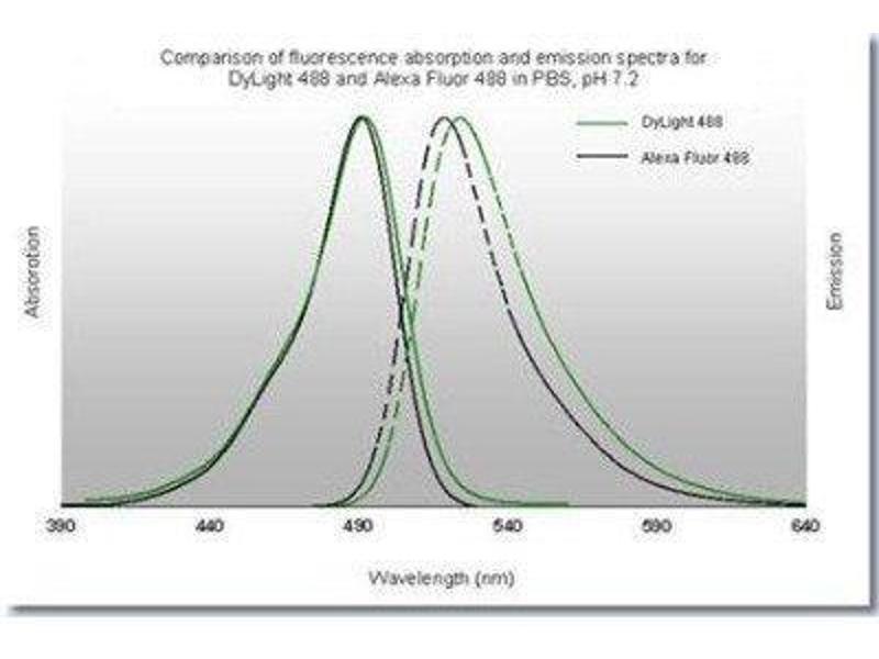 Flow Cytometry (FACS) image for anti-V-Akt Murine Thymoma Viral Oncogene Homolog 1 (AKT1) (pSer473) antibody (ABIN4278999)