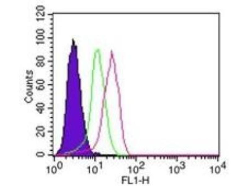 Flow Cytometry (FACS) image for anti-Nuclear Factor of kappa Light Polypeptide Gene Enhancer in B-Cells Inhibitor, alpha (NFKBIA) (AA 32-291) antibody (ABIN252471)