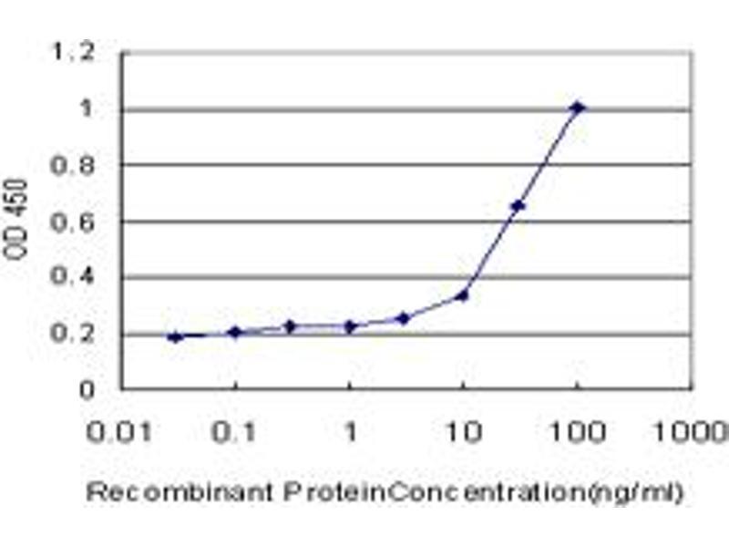 ELISA image for anti-Calcium/calmodulin-Dependent Protein Kinase II alpha (CAMK2A) (AA 305-410), (partial) antibody (ABIN513974)