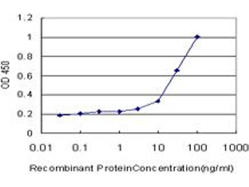 ELISA image for anti-CAMK2A antibody (Calcium/calmodulin-Dependent Protein Kinase II alpha) (AA 305-410) (ABIN513974)