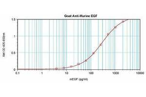 image for anti-EGF antibody (Epidermal Growth Factor) (ABIN465058)