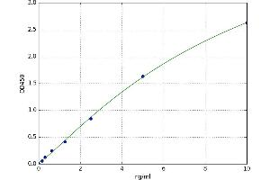 Image no. 1 for Cytochrome P450, Family 1, Subfamily A, Polypeptide 1 (CYP1A1) ELISA Kit (ABIN5523126)