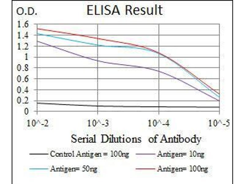 ELISA image for anti-NCK Adaptor Protein 1 (NCK1) antibody (ABIN4880888)
