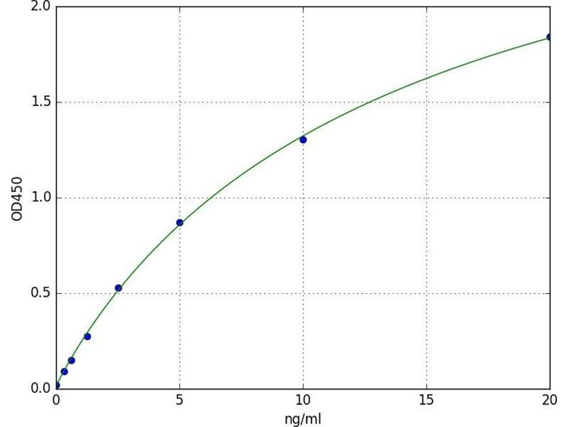 Protein Kinase, CAMP Dependent, Catalytic, beta (PRKACB) ELISA Kit