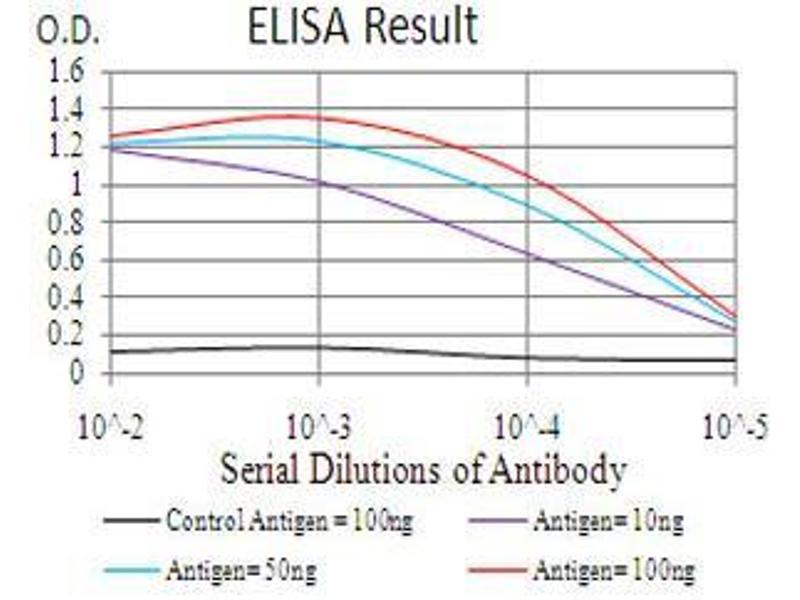 ELISA image for anti-Bone Morphogenetic Protein 2 (BMP2) (AA 283-396) antibody (ABIN4880565)