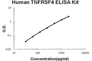Image no. 1 for Tumor Necrosis Factor Receptor Superfamily, Member 4 (TNFRSF4) ELISA Kit (ABIN1672897)