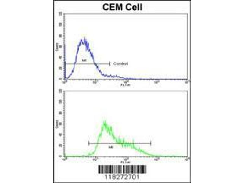 Flow Cytometry (FACS) image for anti-IGHA1 antibody (Immunoglobulin Heavy Constant alpha 1) (AA 257-286) (ABIN391663)