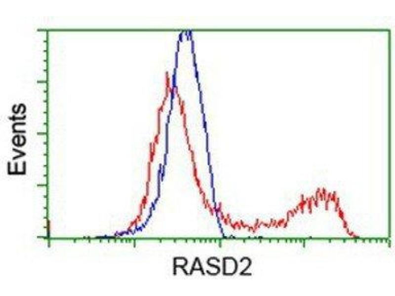 Flow Cytometry (FACS) image for anti-RASD Family, Member 2 (RASD2) antibody (ABIN4349408)
