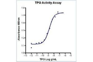 Image no. 1 for Thrombopoietin (THPO) (Active) protein (ABIN1525824)