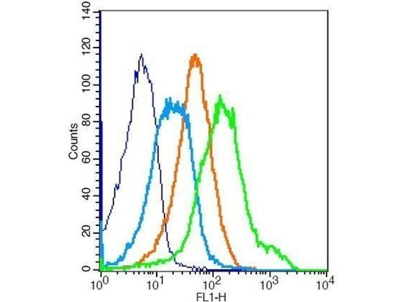 Flow Cytometry (FACS) image for anti-Insulin-Like Growth Factor 1 Receptor (IGF1R) (AA 260-290) antibody (ABIN726575)