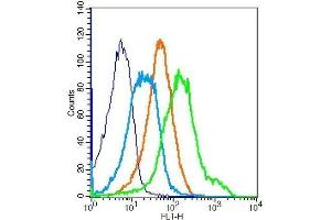 Flow Cytometry (FACS) image for anti-IGF1R antibody (Insulin-Like Growth Factor 1 Receptor) (AA 260-290) (ABIN726575)