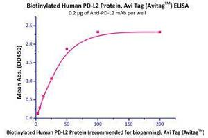 Image no. 2 for Programmed Cell Death 1 Ligand 2 (PDCD1LG2) (AA 20-219) (Active) protein (His tag,AVI tag,Biotin) (ABIN2870560)