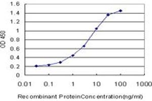Image no. 1 for anti-RanBP-Type and C3HC4-Type Zinc Finger Containing 1 (RBCK1) (AA 3-99) antibody (ABIN524044)