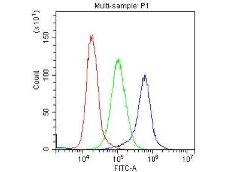Flow Cytometry (FACS) image for anti-Mast/stem Cell Growth Factor Receptor (KIT) (AA 26-285) antibody (ABIN3042739)