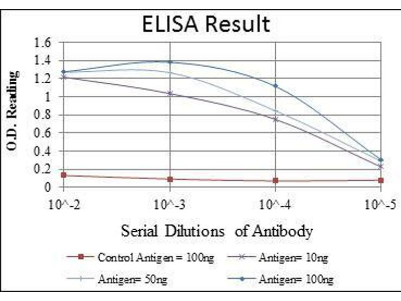 ELISA image for anti-MAPK6 antibody (Mitogen-Activated Protein Kinase 6) (ABIN969115)