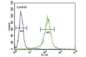 Image no. 1 for anti-Retinol Dehydrogenase 10 (All-Trans) (RDH10) antibody (ABIN3002122)