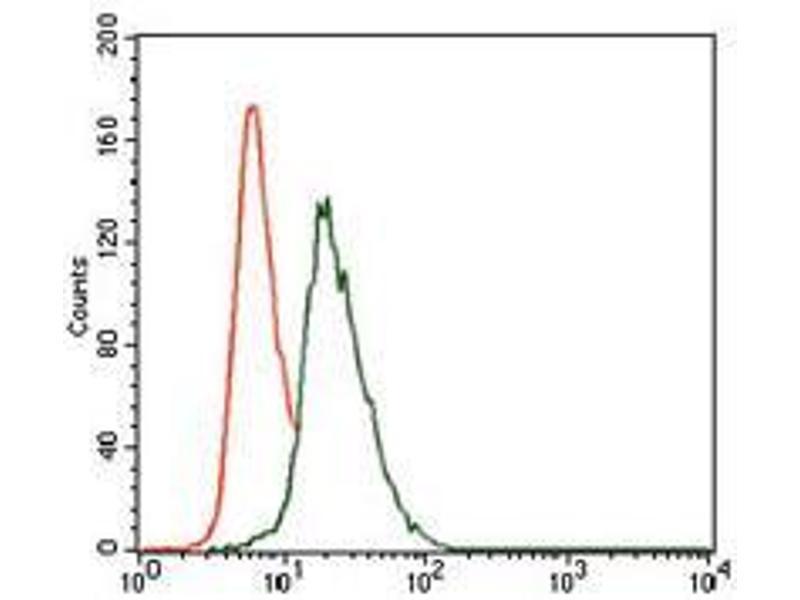 Flow Cytometry (FACS) image for anti-Vav 1 Oncogene (VAV1) (AA 121-324) antibody (ABIN4881134)