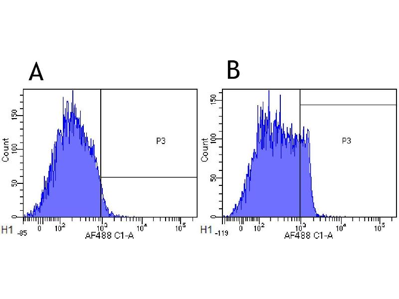 Flow Cytometry (FACS) image for anti-CD4 Molecule (CD4) antibody (ABIN5668250)