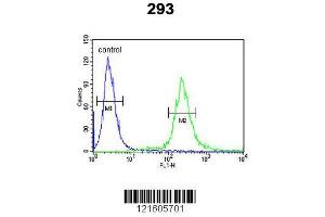 Flow Cytometry (FACS) image for anti-Adenylate Cyclase Activating Polypeptide 1 (Pituitary) (ADCYAP1) (AA 148-176), (C-Term) antibody (ABIN651855)