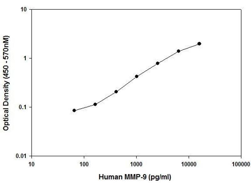 ELISA image for Matrix Metallopeptidase 9 (Gelatinase B, 92kDa Gelatinase, 92kDa Type IV Collagenase) (MMP9) ELISA Kit (ABIN2506950)