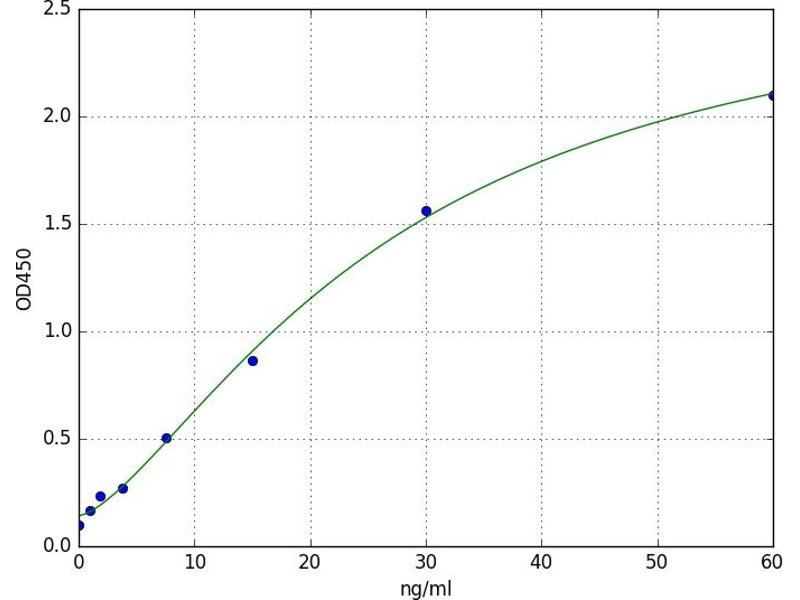 Heat Shock 10kDa Protein 1 (Chaperonin 10) (HSPE1) ELISA Kit
