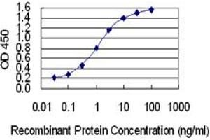 Image no. 1 for anti-Aminoacyl tRNA Synthetase Complex-Interacting Multifunctional Protein 2 (AIMP2) (AA 1-100) antibody (ABIN1327124)