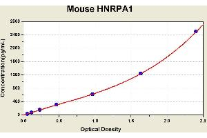 Image no. 1 for Heterogeneous Nuclear Ribonucleoprotein A1 (HNRNPA1) ELISA Kit (ABIN1115420)