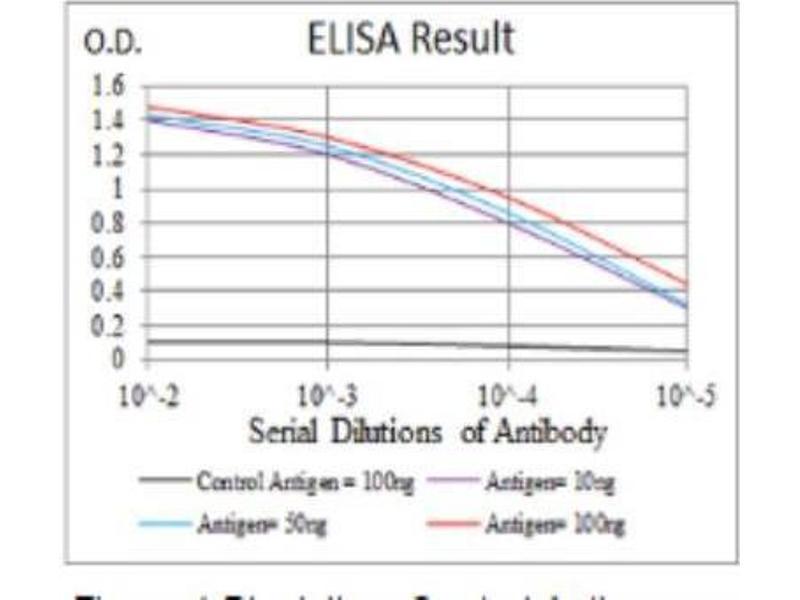 ELISA image for anti-FGFR3 antibody (Fibroblast Growth Factor Receptor 3) (ABIN4311562)