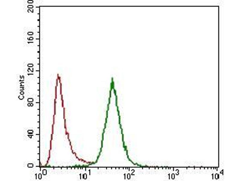 Image no. 2 for anti-CD24 Molecule (CD24) (AA 15-80) antibody (ABIN1724858)