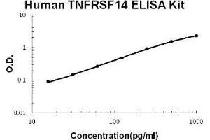 Image no. 1 for Tumor Necrosis Factor Receptor Superfamily, Member 14 (TNFRSF14) ELISA Kit (ABIN1889390)