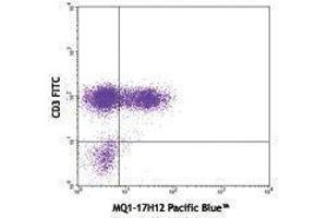 Flow Cytometry (FACS) image for anti-Interleukin 2 (IL2) antibody (Pacific Blue) (ABIN2662352)
