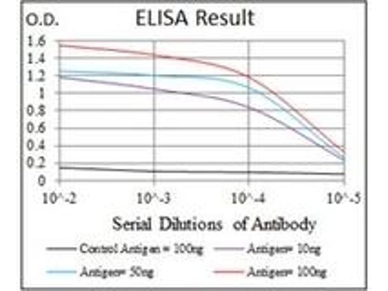 ELISA image for anti-CDK2 antibody (Cyclin-Dependent Kinase 2) (ABIN1106645)