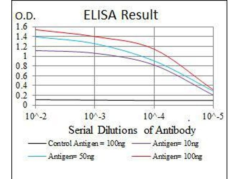 ELISA image for anti-SRC antibody (V-Src Sarcoma (Schmidt-Ruppin A-2) Viral Oncogene Homolog (Avian)) (ABIN969418)