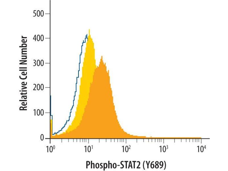 Flow Cytometry (FACS) image for anti-Signal Transducer and Activator of Transcription 2, 113kDa (STAT2) (pTyr689) antibody (ABIN4900632)
