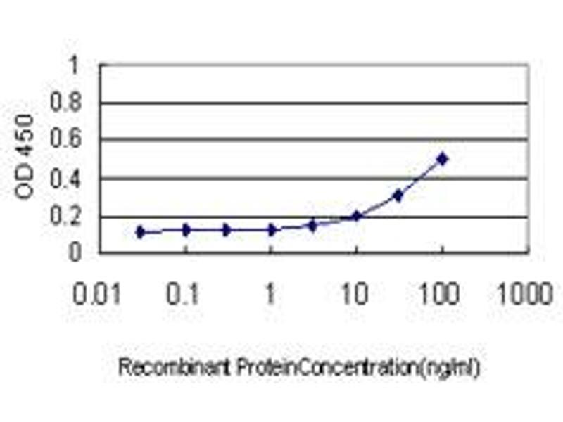 ELISA image for anti-AKT antibody (V-Akt Murine Thymoma Viral Oncogene Homolog 1) (AA 1-480) (ABIN559830)
