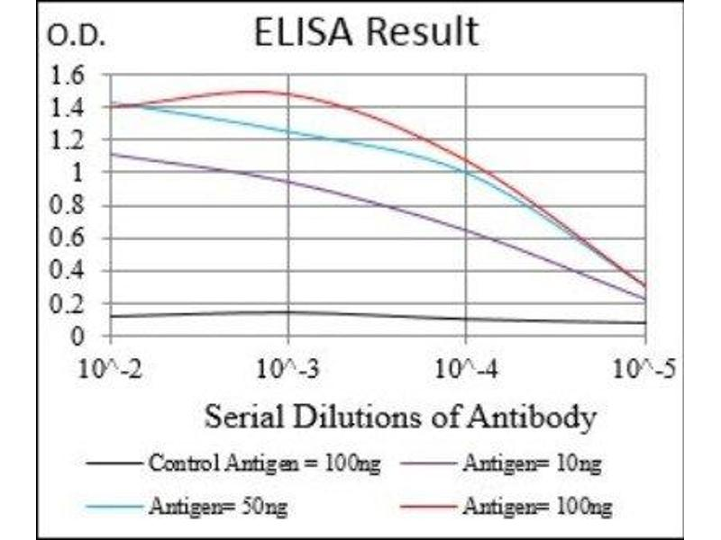 ELISA image for anti-CD68 Molecule (CD68) antibody (ABIN4261705)