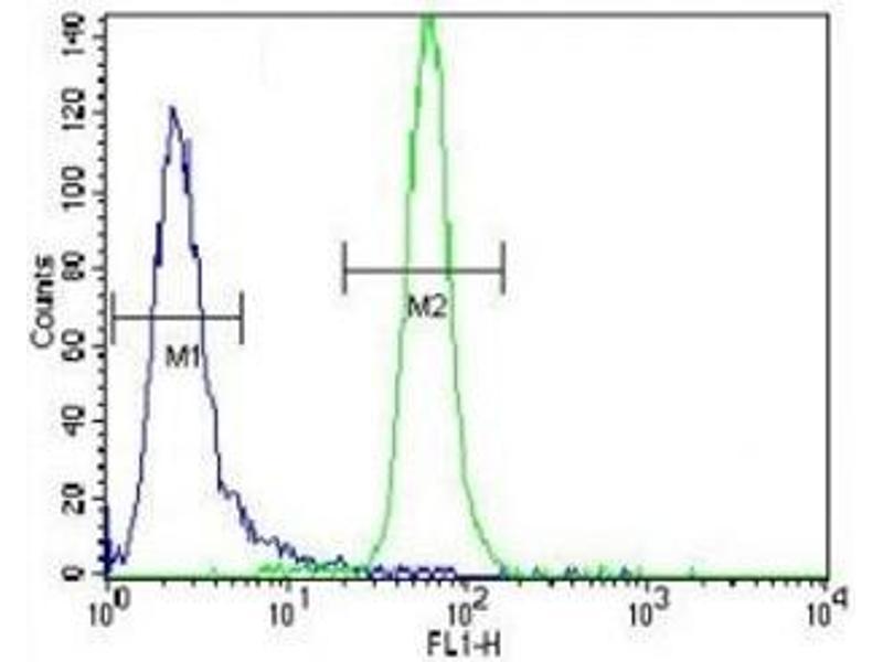 Flow Cytometry (FACS) image for anti-MUSK antibody (Muscle, Skeletal, Receptor Tyrosine Kinase) (ABIN3031879)