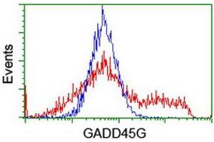 Image no. 1 for anti-Growth Arrest and DNA-Damage-Inducible, gamma (GADD45G) antibody (ABIN1497601)