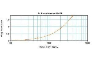 image for anti-CSF1 antibody (Colony Stimulating Factor 1 (Macrophage))  (Biotin) (ABIN465550)