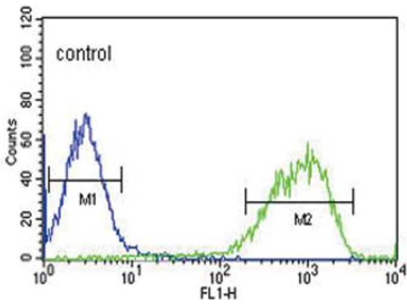 Flow Cytometry (FACS) image for anti-Epiregulin (EREG) antibody (ABIN3002135)