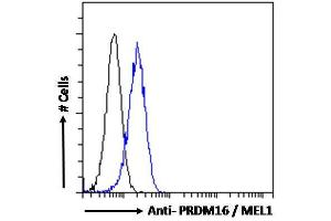 Image no. 1 for anti-PR Domain Containing 16 (PRDM16) (C-Term) antibody (ABIN184809)
