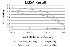 ELISA image for anti-ITK antibody (IL2-Inducible T-Cell Kinase) (ABIN969222)