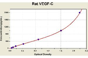 Image no. 1 for Vascular Endothelial Growth Factor C (VEGFC) ELISA Kit (ABIN1117755)