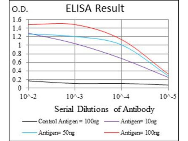 ELISA image for anti-Interleukin 2 Receptor, alpha (IL2RA) (AA 34-139) antibody (ABIN1845343)