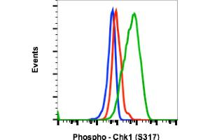 Flow Cytometry (FACS) image for anti-Checkpoint Kinase 1 (CHEK1) (pSer317) antibody (ABIN5671121)
